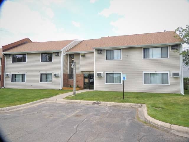 3800 Bayside Drive #2, Palatine, IL 60074 (MLS #11089117) :: Schoon Family Group