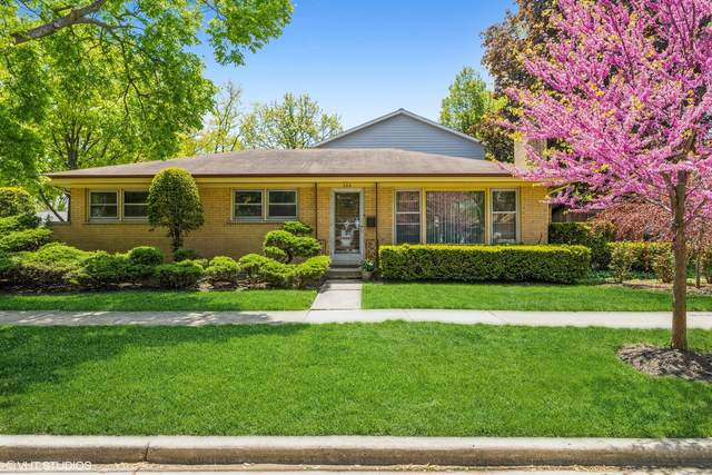 744 Forestview Avenue, Park Ridge, IL 60068 (MLS #11089206) :: Helen Oliveri Real Estate