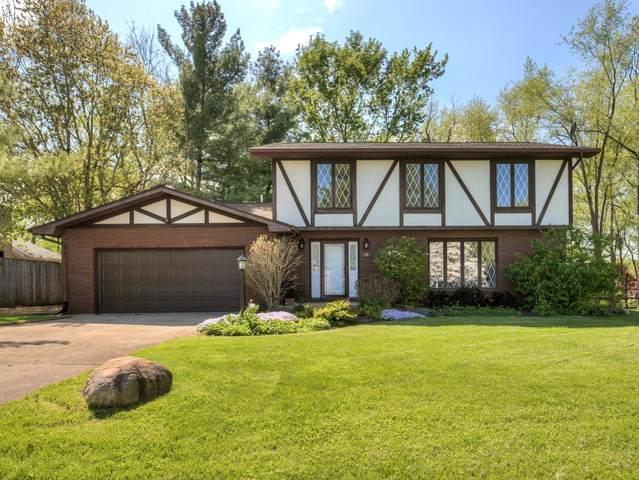 50 Glenn Drive, WHITE HEATH, IL 61884 (MLS #11089322) :: BN Homes Group
