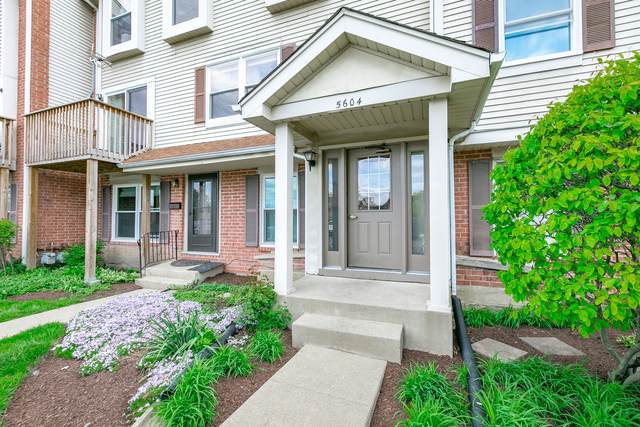 5604 Tinder Drive #6, Rolling Meadows, IL 60008 (MLS #11089654) :: Schoon Family Group