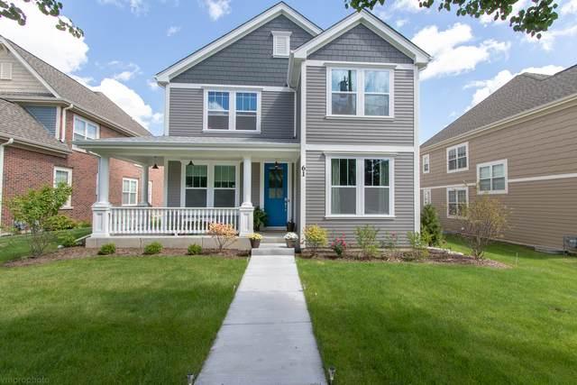 61 Pleasant Drive, Schaumburg, IL 60194 (MLS #11089672) :: Schoon Family Group