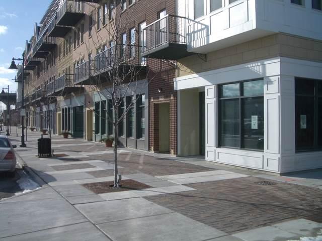 348 River Street #3405, Lemont, IL 60439 (MLS #11089904) :: BN Homes Group