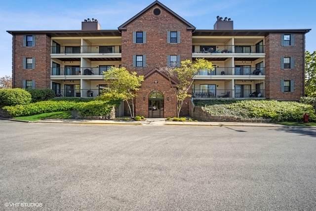 641 Hapsfield Lane #103, Buffalo Grove, IL 60089 (MLS #11090185) :: Helen Oliveri Real Estate