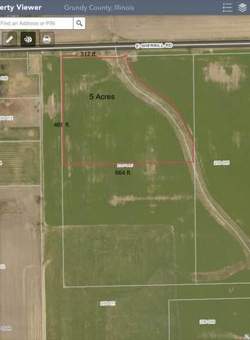 4515 Sherrill Road, Minooka, IL 60447 (MLS #11090313) :: Littlefield Group