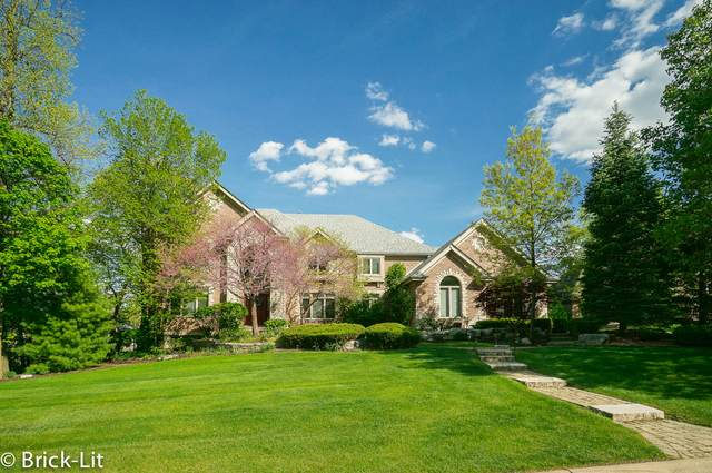 20677 Francisca Way, Frankfort, IL 60423 (MLS #11090377) :: BN Homes Group