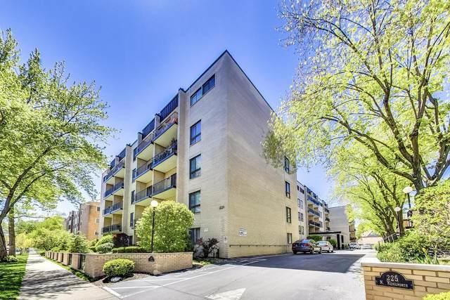 221 N Kenilworth Avenue #212, Oak Park, IL 60302 (MLS #11090457) :: Helen Oliveri Real Estate
