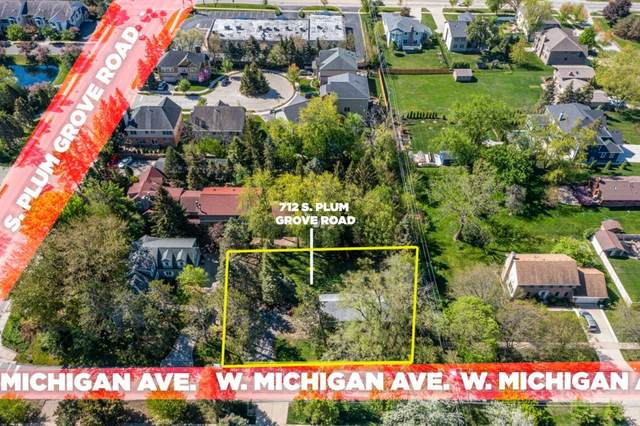 712 S Plum Grove Road, Palatine, IL 60067 (MLS #11090807) :: Helen Oliveri Real Estate