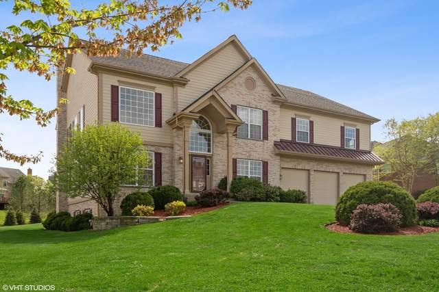 24 Deerfield Drive, Hawthorn Woods, IL 60047 (MLS #11090954) :: Littlefield Group