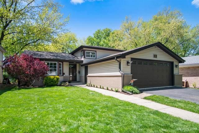 174 S Milton Avenue, Glen Ellyn, IL 60137 (MLS #11091183) :: Helen Oliveri Real Estate