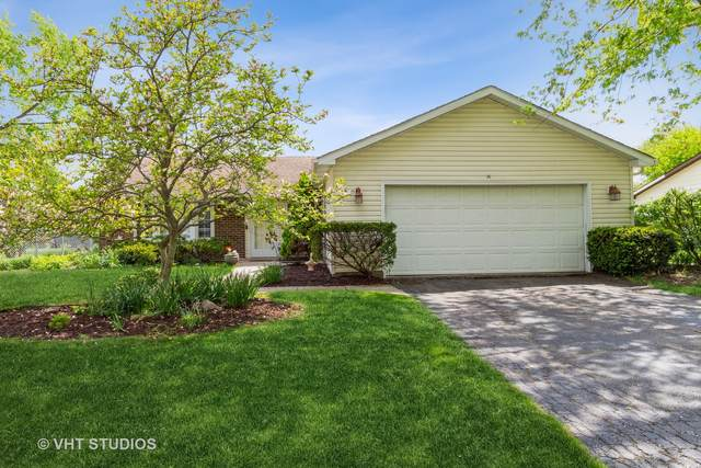 59 E Cunningham Drive, Palatine, IL 60067 (MLS #11091369) :: Helen Oliveri Real Estate