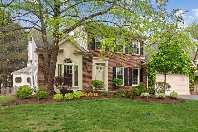 1502 Jersey Court, Buffalo Grove, IL 60089 (MLS #11091401) :: Helen Oliveri Real Estate