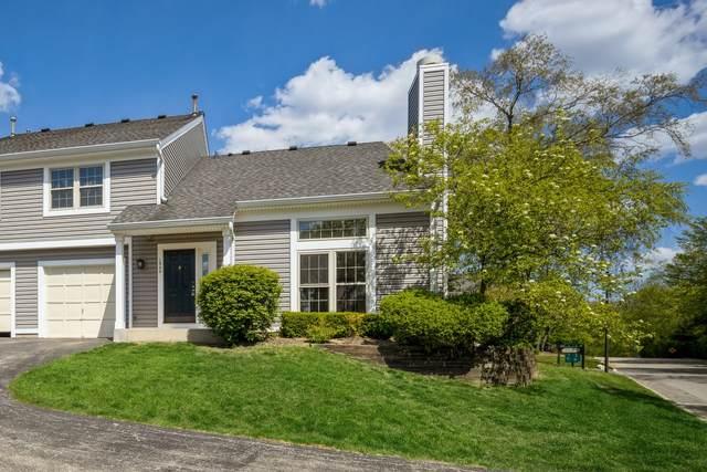 1348 N Knollwood Drive, Palatine, IL 60067 (MLS #11091622) :: Helen Oliveri Real Estate