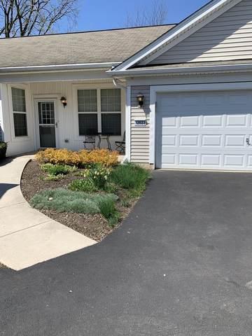 12623 Rock Island Trail #0, Huntley, IL 60142 (MLS #11091916) :: Helen Oliveri Real Estate