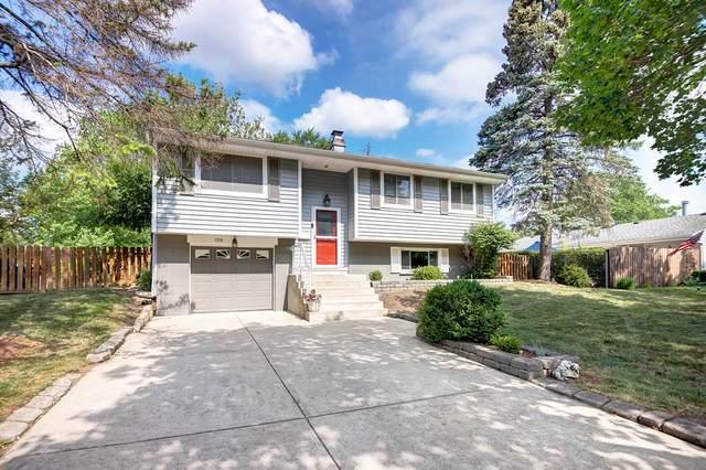 1520 Chatham Lane, Schaumburg, IL 60193 (MLS #11092175) :: Ryan Dallas Real Estate