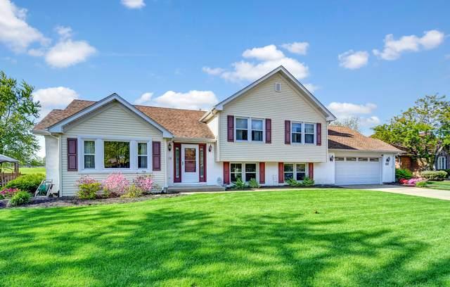 10739 Revere Road, Mokena, IL 60448 (MLS #11093075) :: Helen Oliveri Real Estate