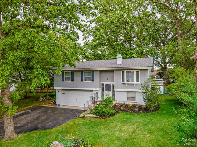 216 Hawthorne Road, Lake In The Hills, IL 60156 (MLS #11093649) :: O'Neil Property Group