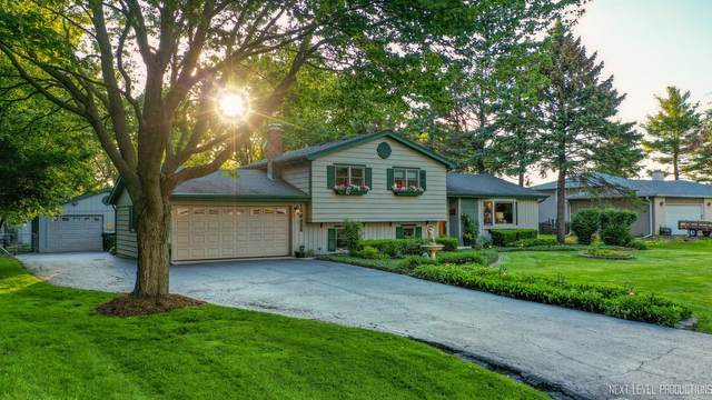 10S030 Alago Road, Naperville, IL 60564 (MLS #11093901) :: BN Homes Group