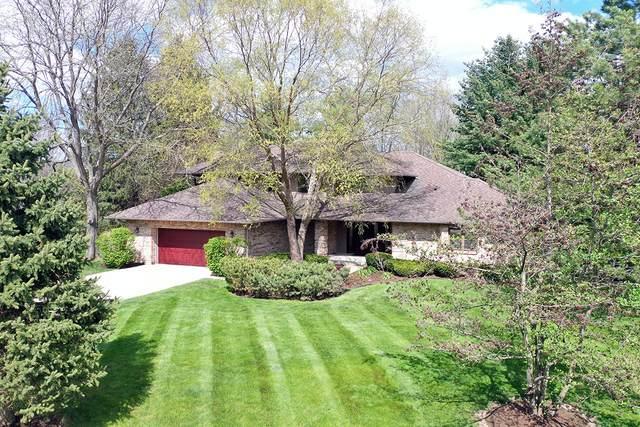 5329 Oak Grove Drive, Long Grove, IL 60047 (MLS #11094437) :: BN Homes Group