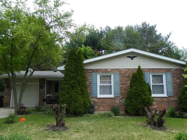 919 Darlington Lane, Crystal Lake, IL 60014 (MLS #11094465) :: BN Homes Group