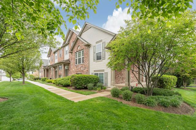480 Valentine Way, Oswego, IL 60543 (MLS #11094536) :: O'Neil Property Group