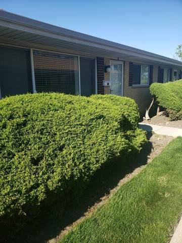 803 Valley Stream Drive B, Wheeling, IL 60090 (MLS #11094670) :: BN Homes Group