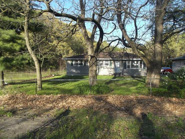 128 S Bower Road, Beaverville, IL 60912 (MLS #11095043) :: BN Homes Group