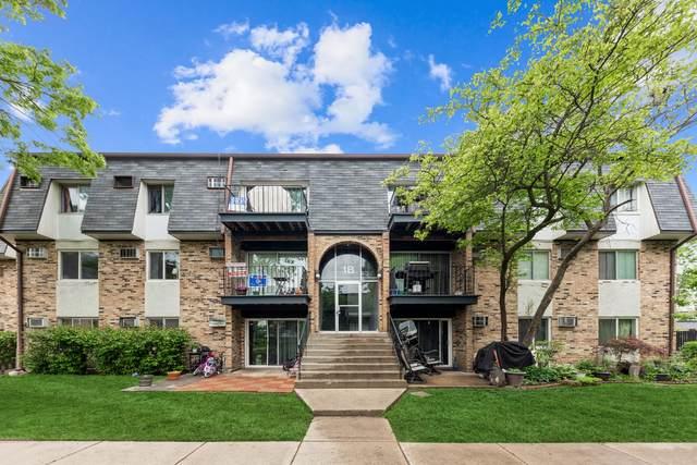 1 E Dundee Quarter Drive #204, Palatine, IL 60074 (MLS #11095296) :: Ryan Dallas Real Estate