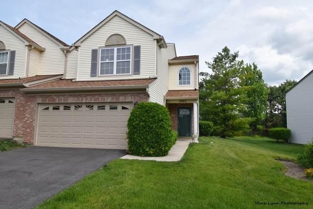 2903 Caldwell Lane #2903, Geneva, IL 60134 (MLS #11095806) :: O'Neil Property Group