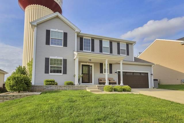 582 Niagara Drive, Volo, IL 60073 (MLS #11096193) :: Jacqui Miller Homes
