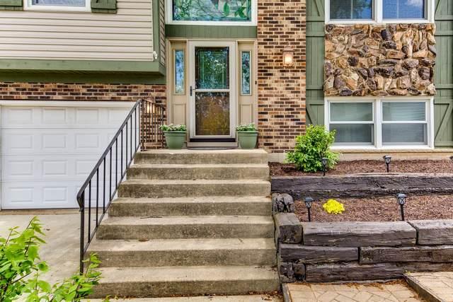 1659 Cape Breton Court, Hoffman Estates, IL 60192 (MLS #11096375) :: Suburban Life Realty