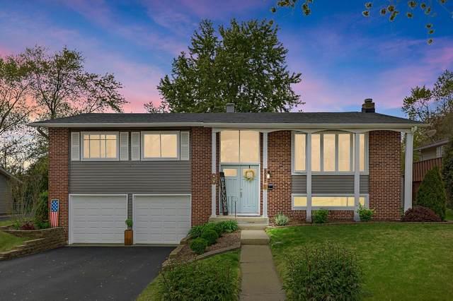 6032 Ridgeway Drive, Woodridge, IL 60517 (MLS #11097246) :: BN Homes Group