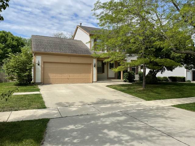 726 Huntington Drive, Carol Stream, IL 60188 (MLS #11097459) :: BN Homes Group