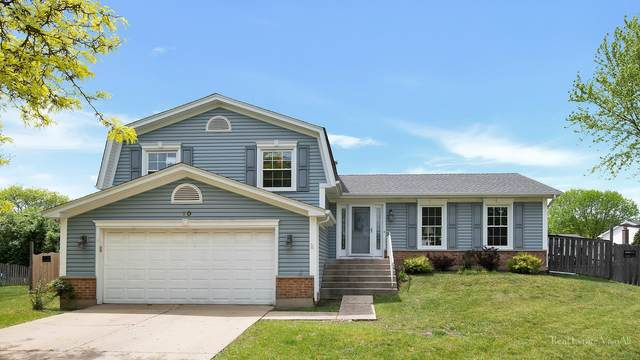 10 Wakefield Court, Buffalo Grove, IL 60089 (MLS #11098495) :: BN Homes Group