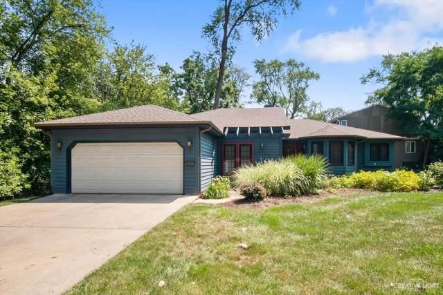 935 Oakley Avenue, Elgin, IL 60123 (MLS #11098516) :: Suburban Life Realty