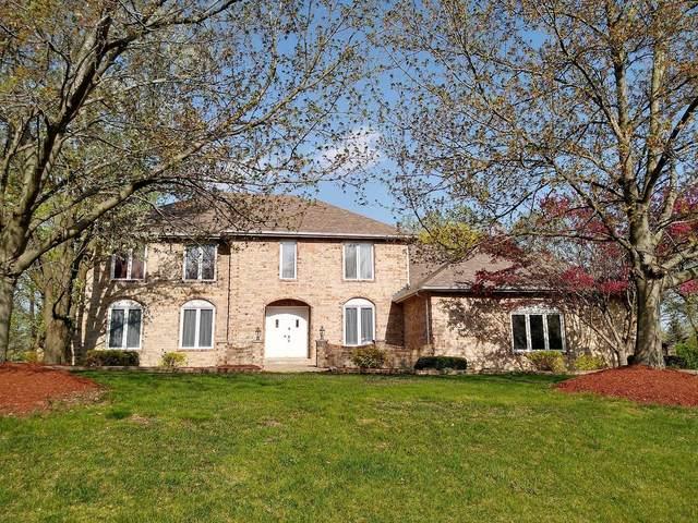 15017 S Woodcrest Avenue, Homer Glen, IL 60491 (MLS #11098963) :: BN Homes Group
