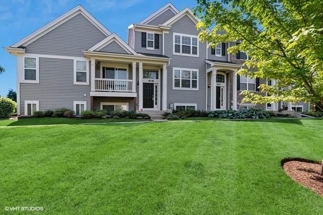 918 Richard Brown Boulevard #918, Volo, IL 60073 (MLS #11099042) :: BN Homes Group
