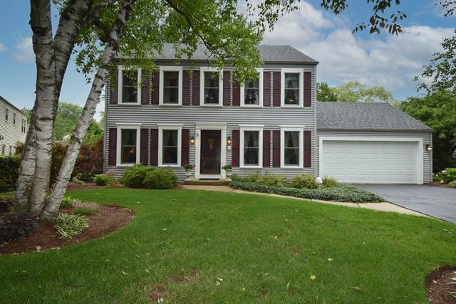 236 Chasse Circle, St. Charles, IL 60174 (MLS #11100072) :: Suburban Life Realty