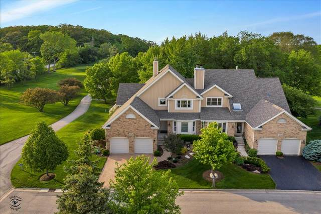 10730 Hollow Tree Court, Orland Park, IL 60462 (MLS #11100705) :: BN Homes Group