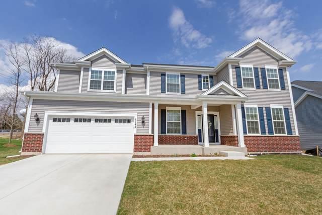 1342 Highpoint Court, Bartlett, IL 60103 (MLS #11100830) :: BN Homes Group
