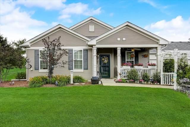 1622 Hannah Lane, Pingree Grove, IL 60140 (MLS #11101164) :: Jacqui Miller Homes