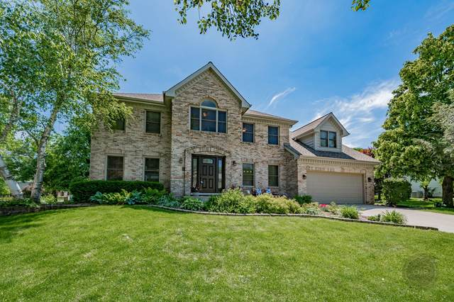 2709 Haddassah Drive, Naperville, IL 60565 (MLS #11101190) :: BN Homes Group