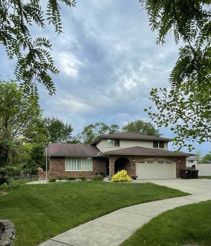 8915 Catalpa Court, Tinley Park, IL 60487 (MLS #11101878) :: BN Homes Group