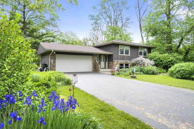 5513 Kingston Avenue, Lisle, IL 60532 (MLS #11101955) :: O'Neil Property Group