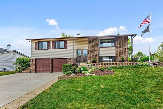 665 Arizona Pass, Elk Grove Village, IL 60007 (MLS #11102057) :: BN Homes Group