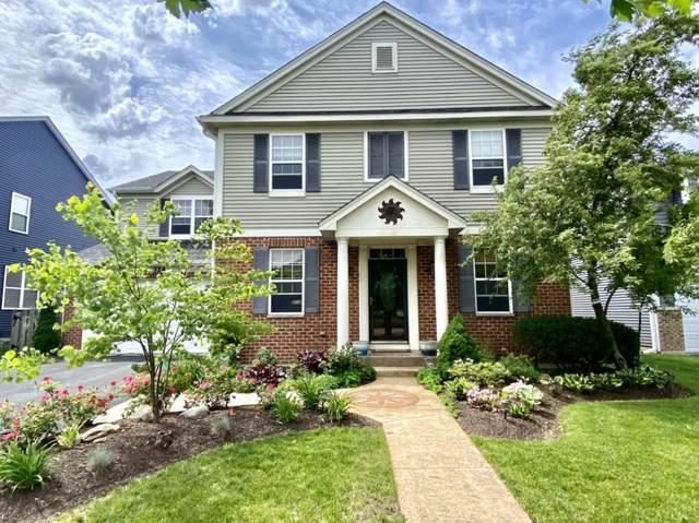 324 Bluegrass Parkway, Oswego, IL 60543 (MLS #11102684) :: O'Neil Property Group