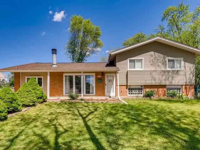 665 Western Street, Hoffman Estates, IL 60169 (MLS #11102737) :: BN Homes Group