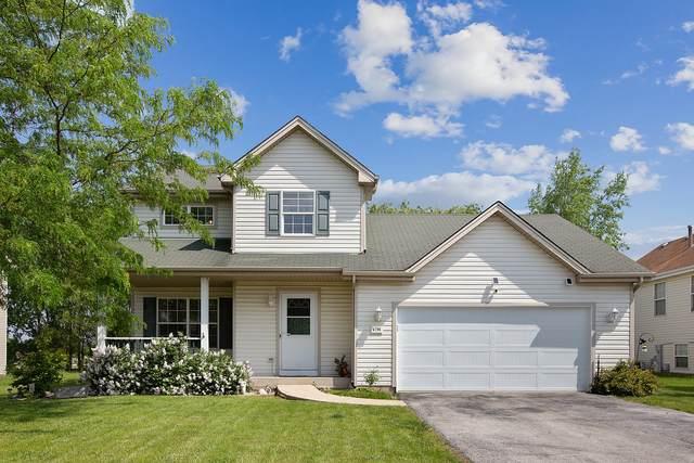 4796 W Lilac Avenue, Monee, IL 60449 (MLS #11102931) :: BN Homes Group