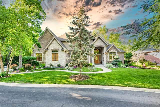 209 Linden Oaks Lane, New Lenox, IL 60451 (MLS #11104337) :: Schoon Family Group