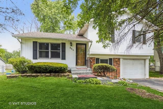 864 Summit Lane, Bolingbrook, IL 60440 (MLS #11104592) :: O'Neil Property Group
