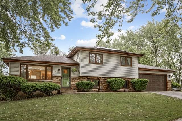 929 Helen Avenue, South Elgin, IL 60177 (MLS #11104785) :: BN Homes Group